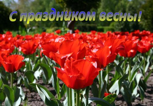 Поздравления с 1 мая и Днём Победы! Открытка